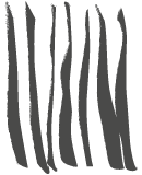 Roovido Logo